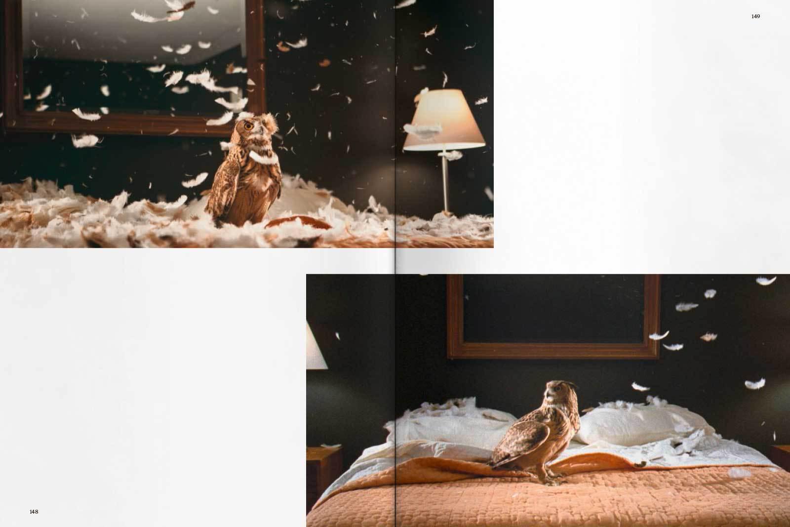 Doug Aitken spread16