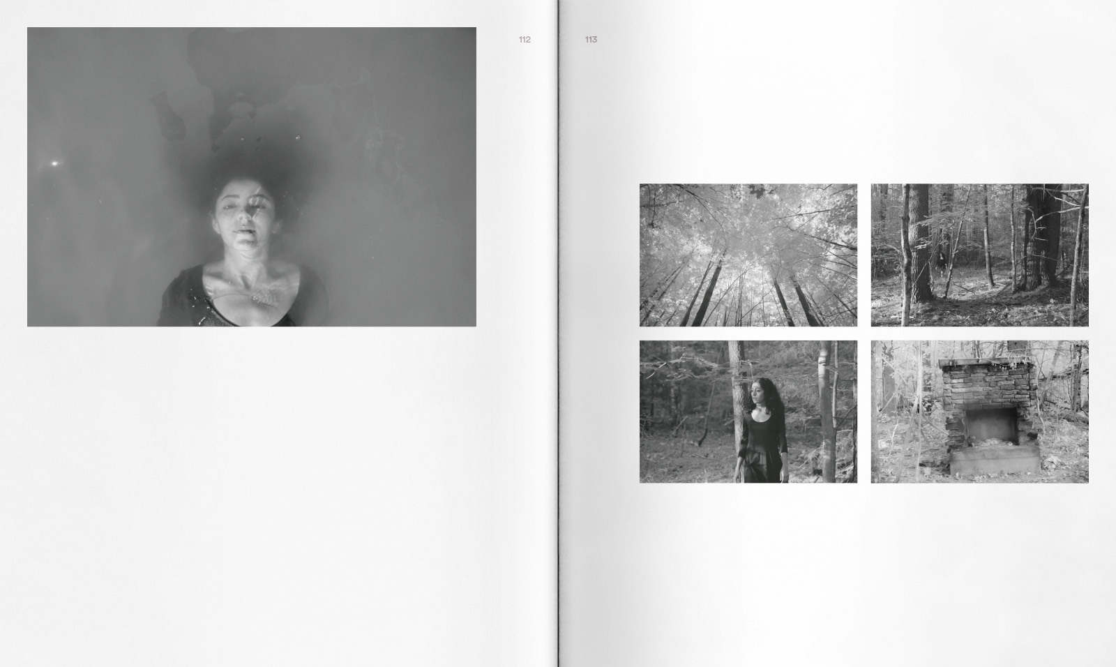 Nesthat spread09